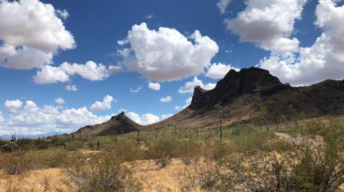 decorative image of Pinal County, AZ